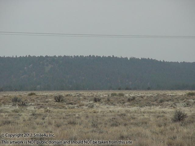 445217_watermarked_pic 379.jpg